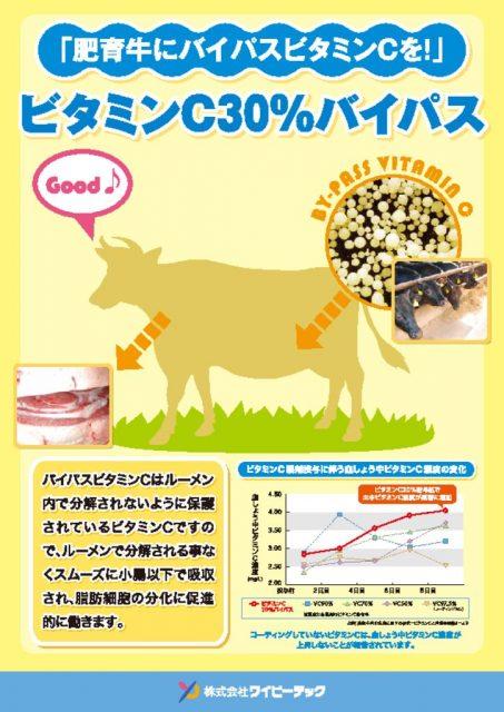 ビタミンC30%バイパス【バイパスビタミンC】